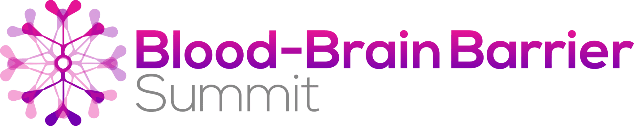 Blood-Brain Barrier Summit 2020 logo FINAL